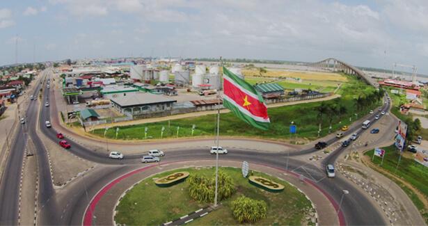 Diaspora-Instituut-Suriname
